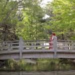 Toronto Hindu South Asian Wedding Video in Mississauga